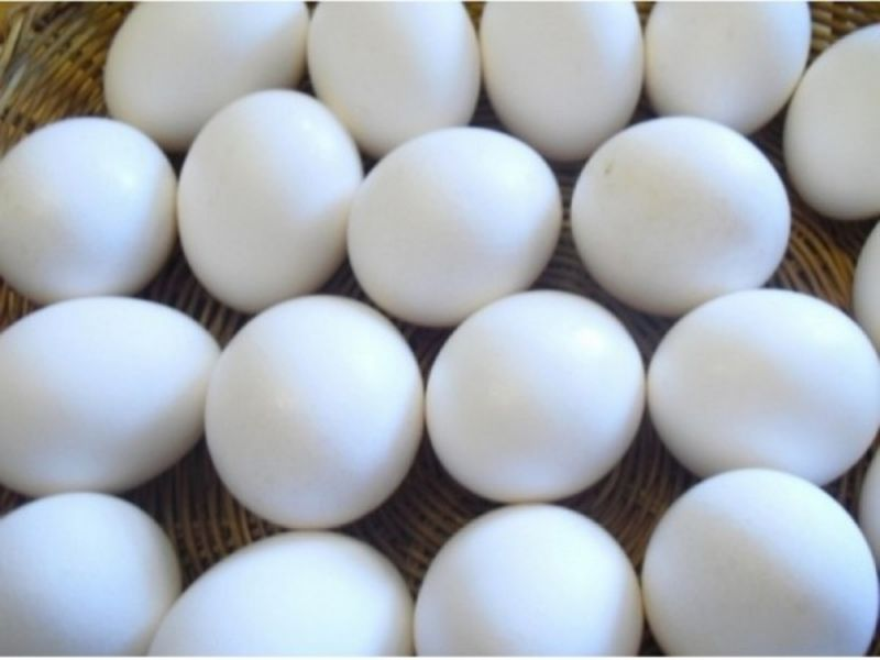 How To Make HardBoiled Eggs With No Green Ring  Annapolis MD Patch