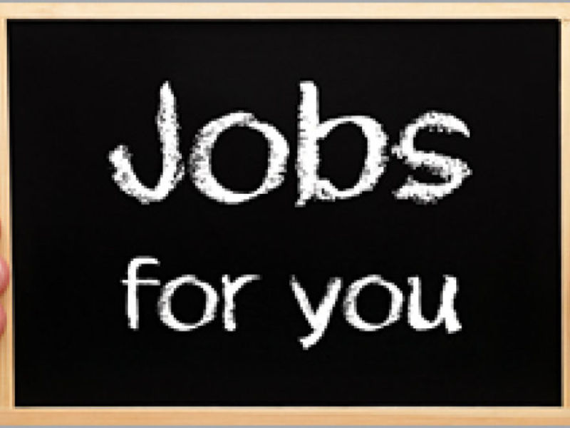 51 Job Openings in Odenton Area | Odenton, MD Patch