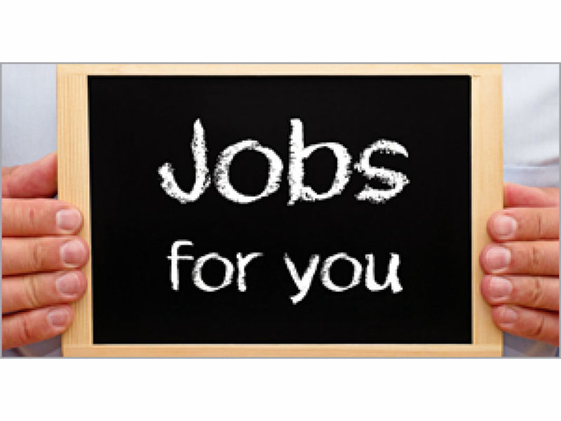 80 Job Openings in Annapolis Area