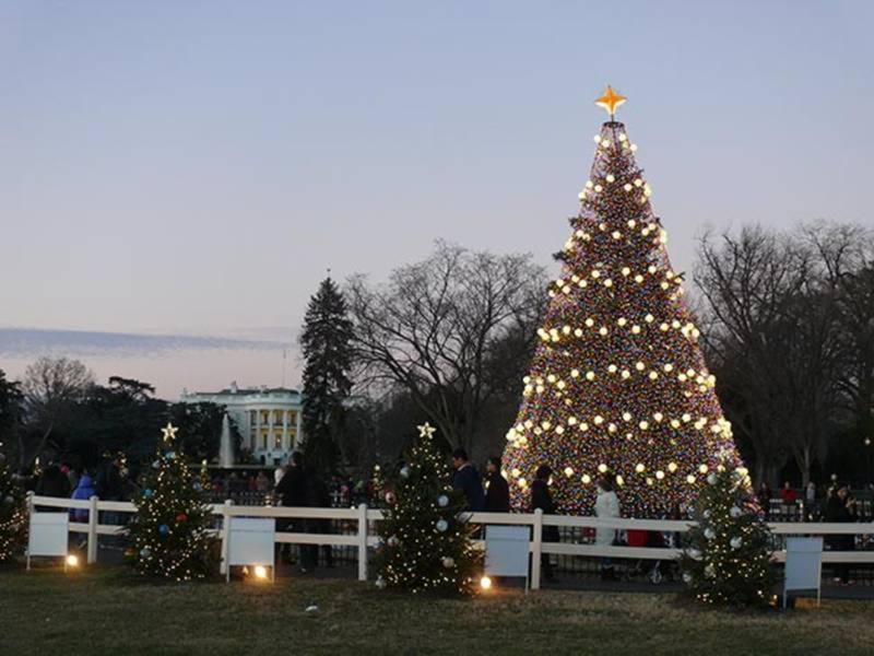 national christmas tree lighting 2017 road closures performers