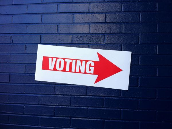 31 voters may face charges for casting 2 ballots in election