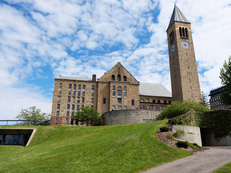 cornell student strips for thesis after short shorts comment