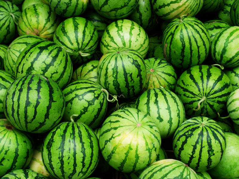 Image result for Watermelons