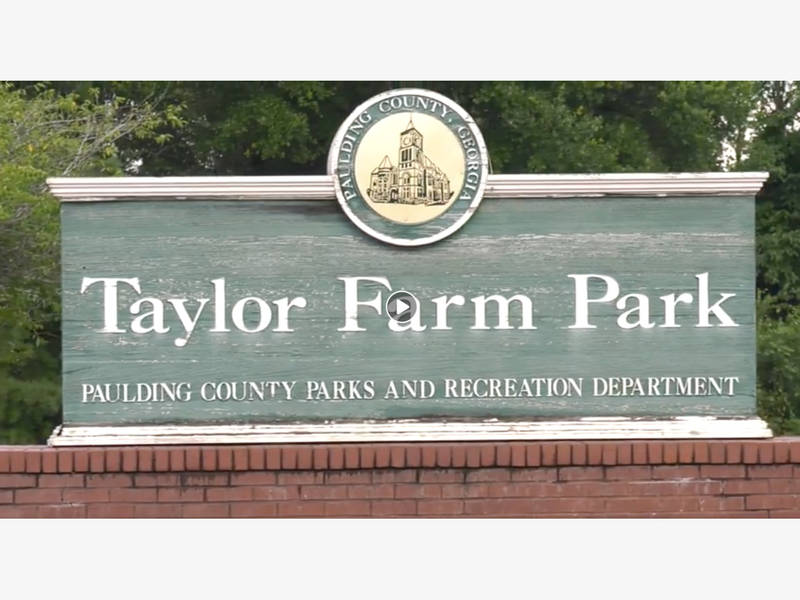 What The Heck Is Going On At Taylor Farm Park In Paulding Dallas