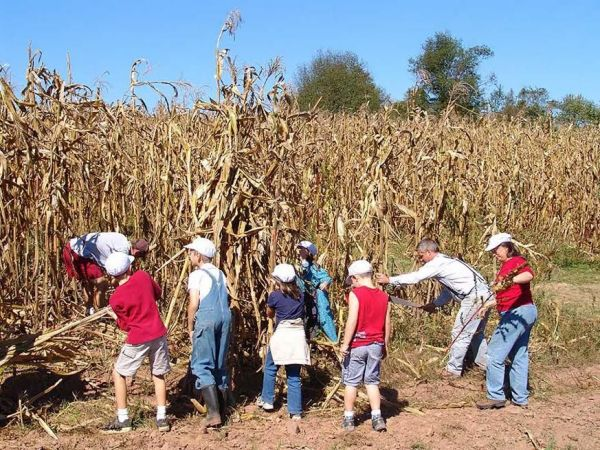 Hands on corn harvest in mercer county this weekend for America s second harvest