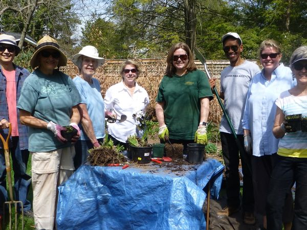 Spring Plant Expo And Garden Market In Lawrence Township