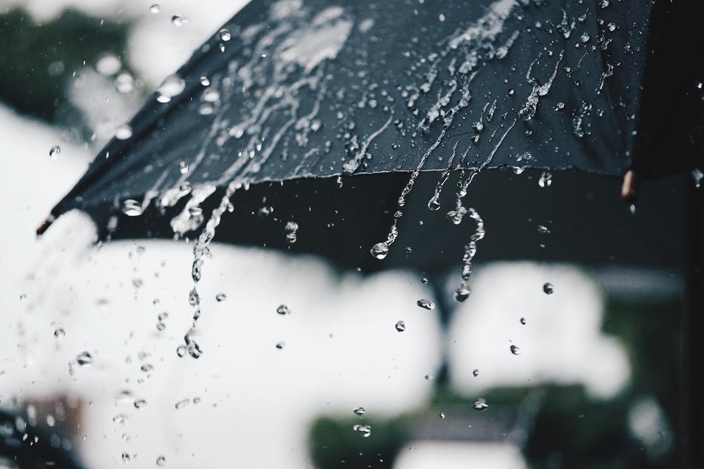 appleton weekly weather forecast
